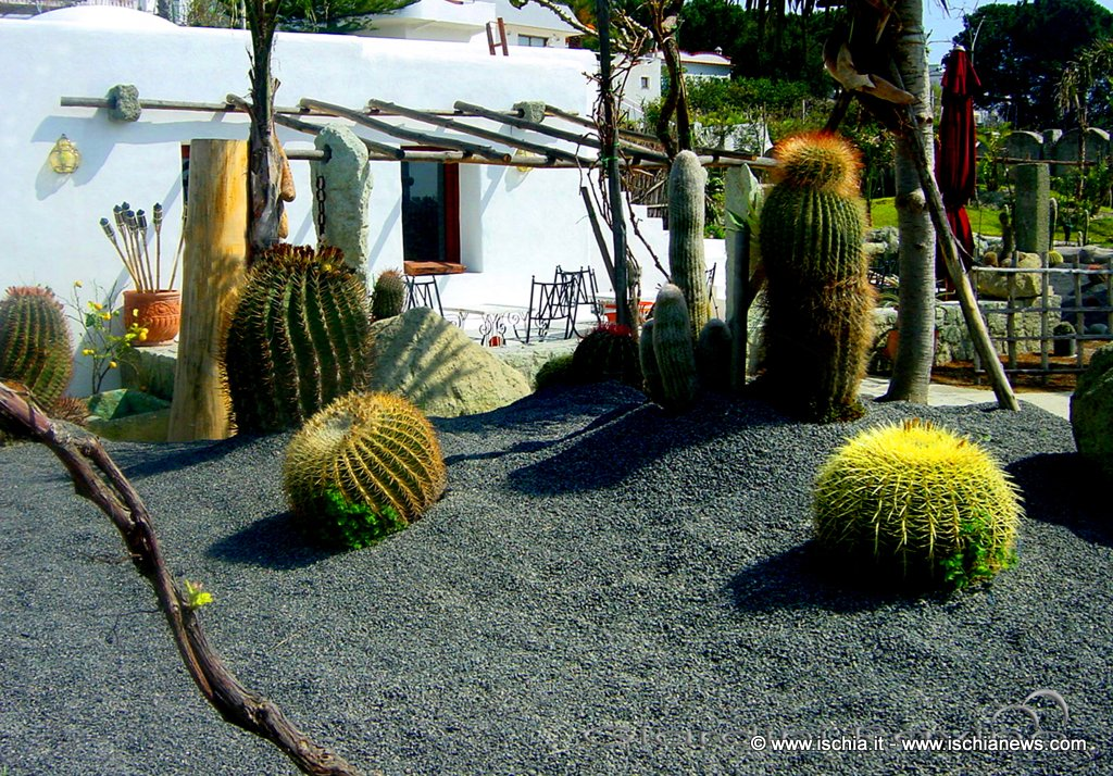 Ischia news ed eventi i giardini ravino pronti per la for Case e giardini